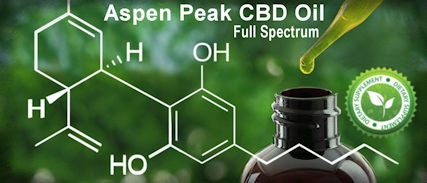 Everything You Need to Know About Full Spectrum CBD Oil: Benefits, Advantages, & How to Choose One