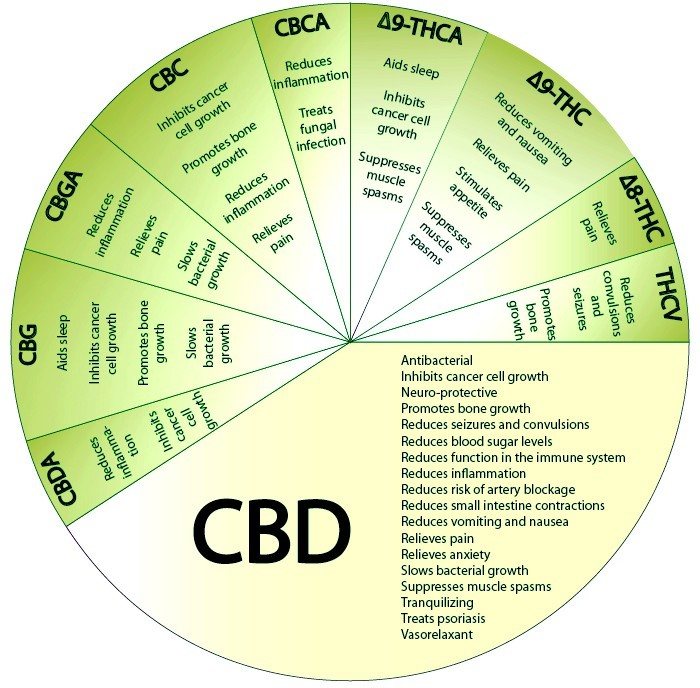 Benefits CBD