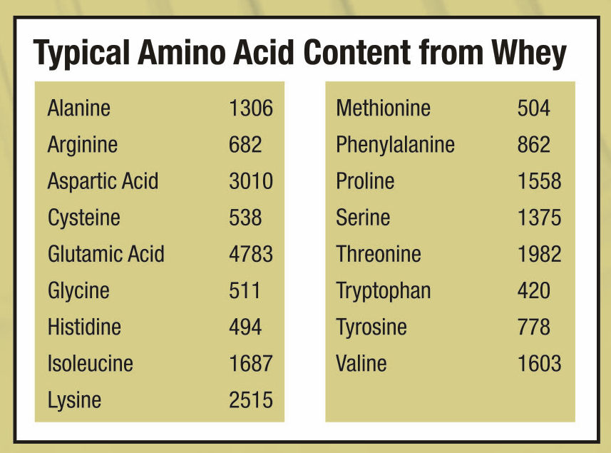 Whey Amino Acid Profile